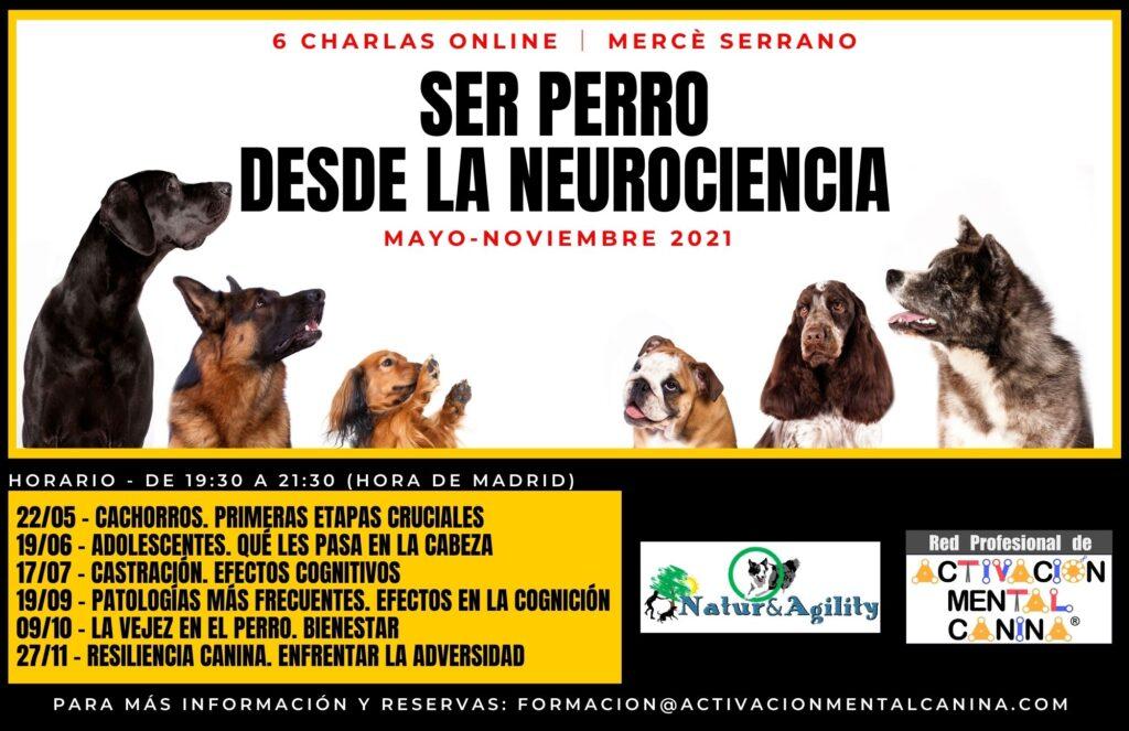 """Charlas ONLINE """"Ser Perro desde la Neurociencia"""", con Mercè Serrano @ Charlas online (vía Zoom)"""